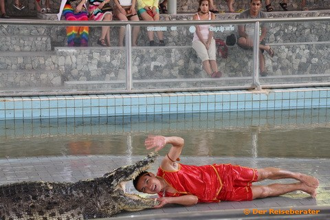 14-crocodile-farm-mit-thomas-046.jpg