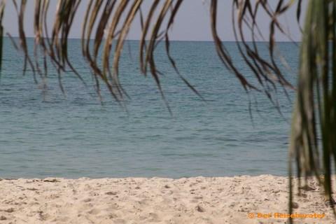 18-strandtag-mit-thomas-17.jpg