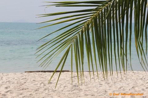 18-strandtag-mit-thomas-22.jpg