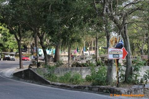 19-khao-kheow-open-zoo-095.jpg