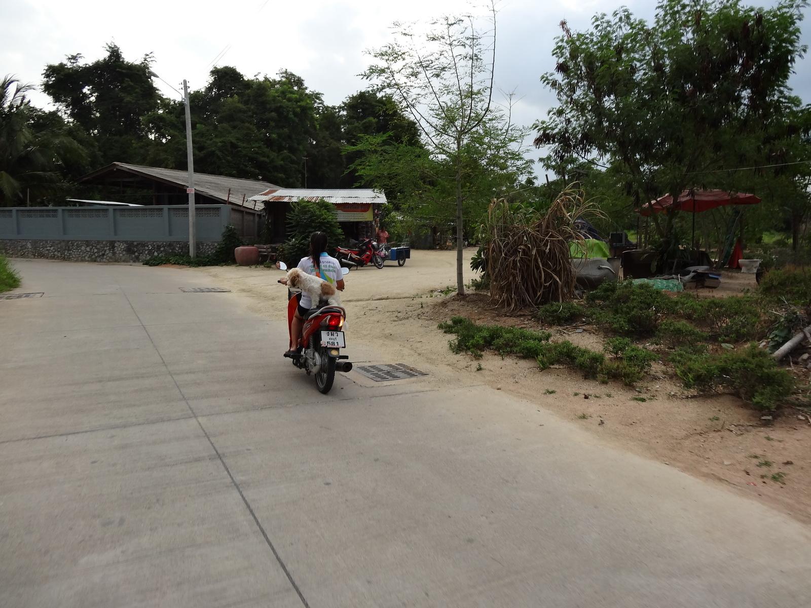 12 Pattaya 006