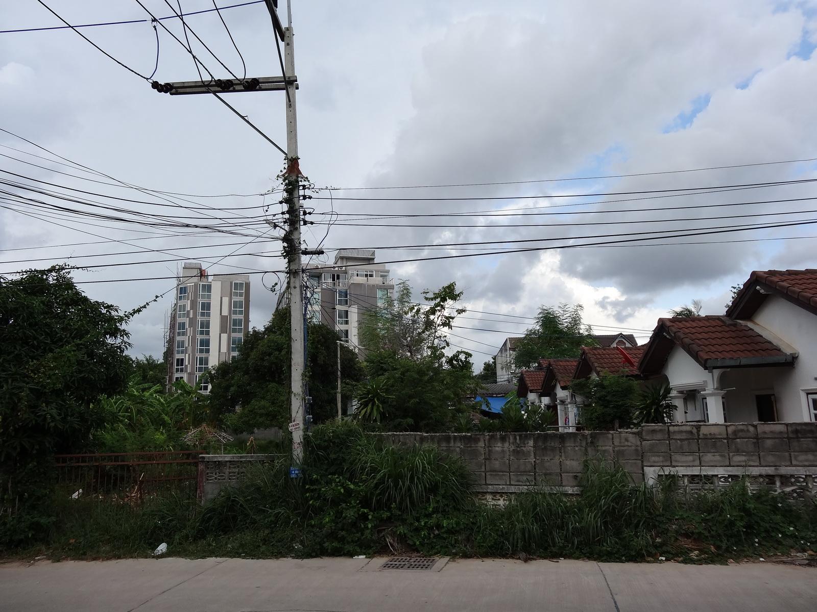 12 Pattaya 235