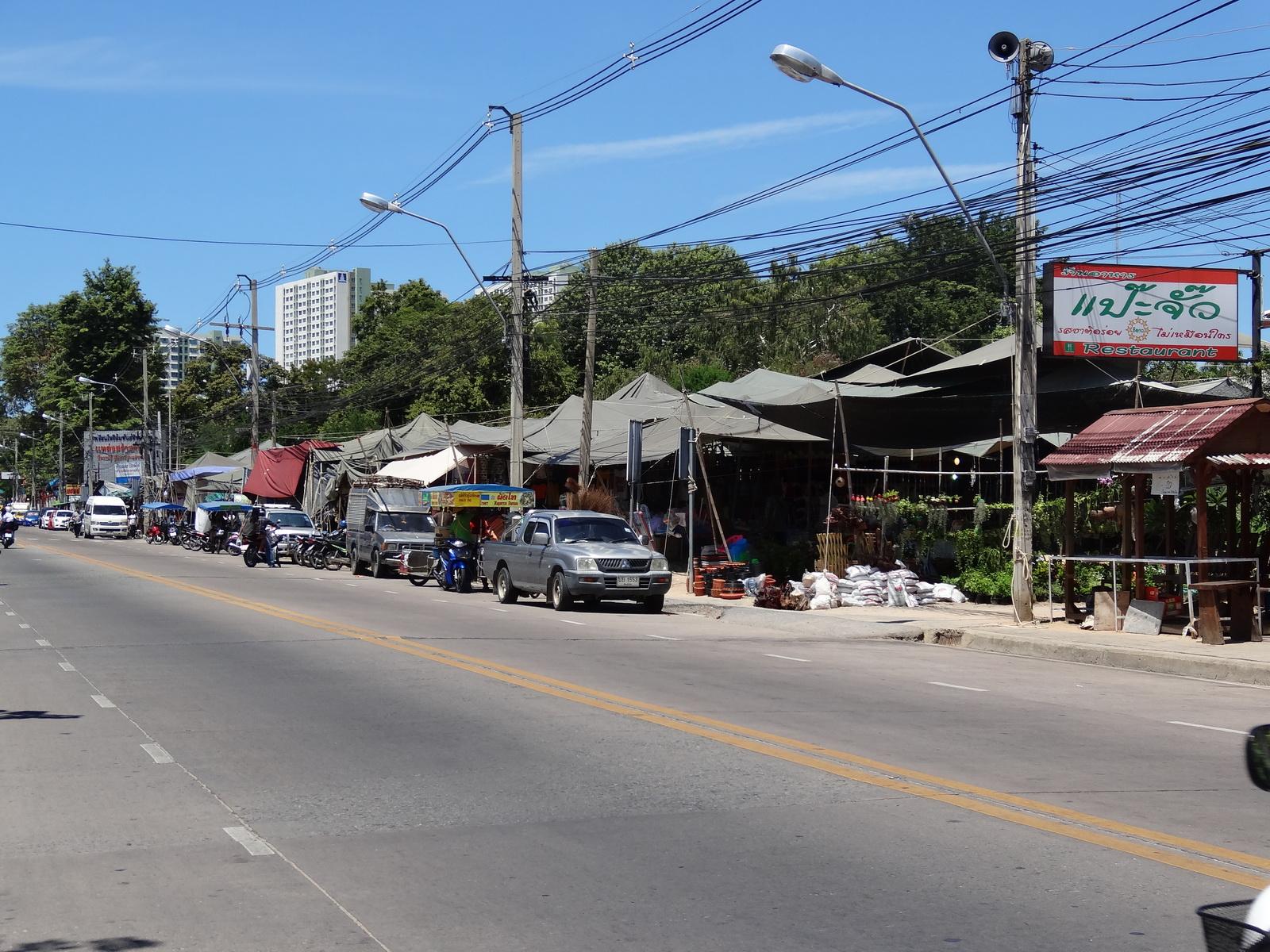 12 Pattaya 251