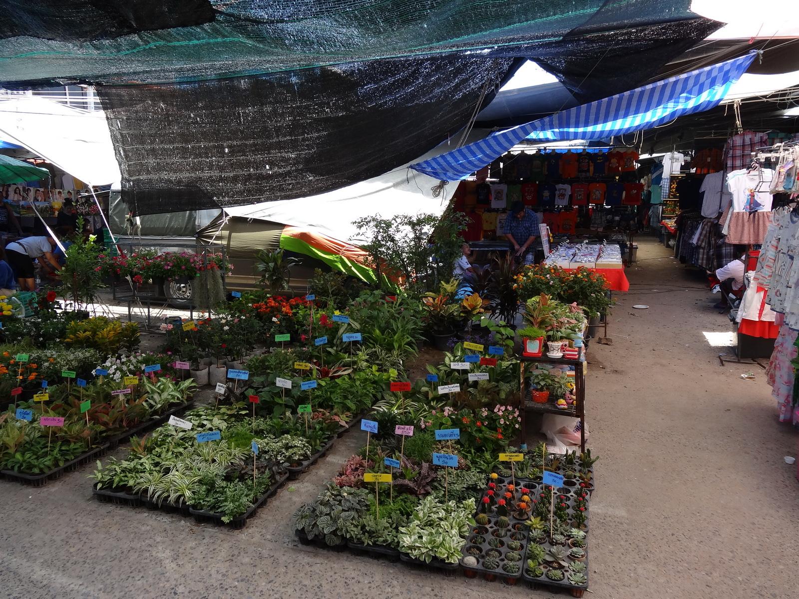 17 Buakhao Markt 16