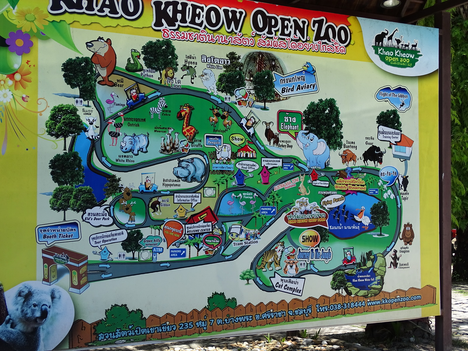 21 Khao Kheow Open Zoo 65