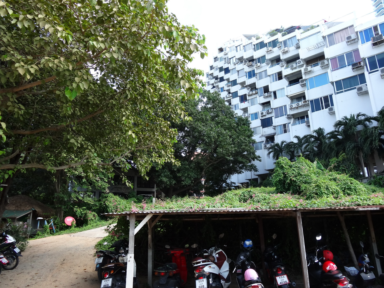 20 Pattaya 019