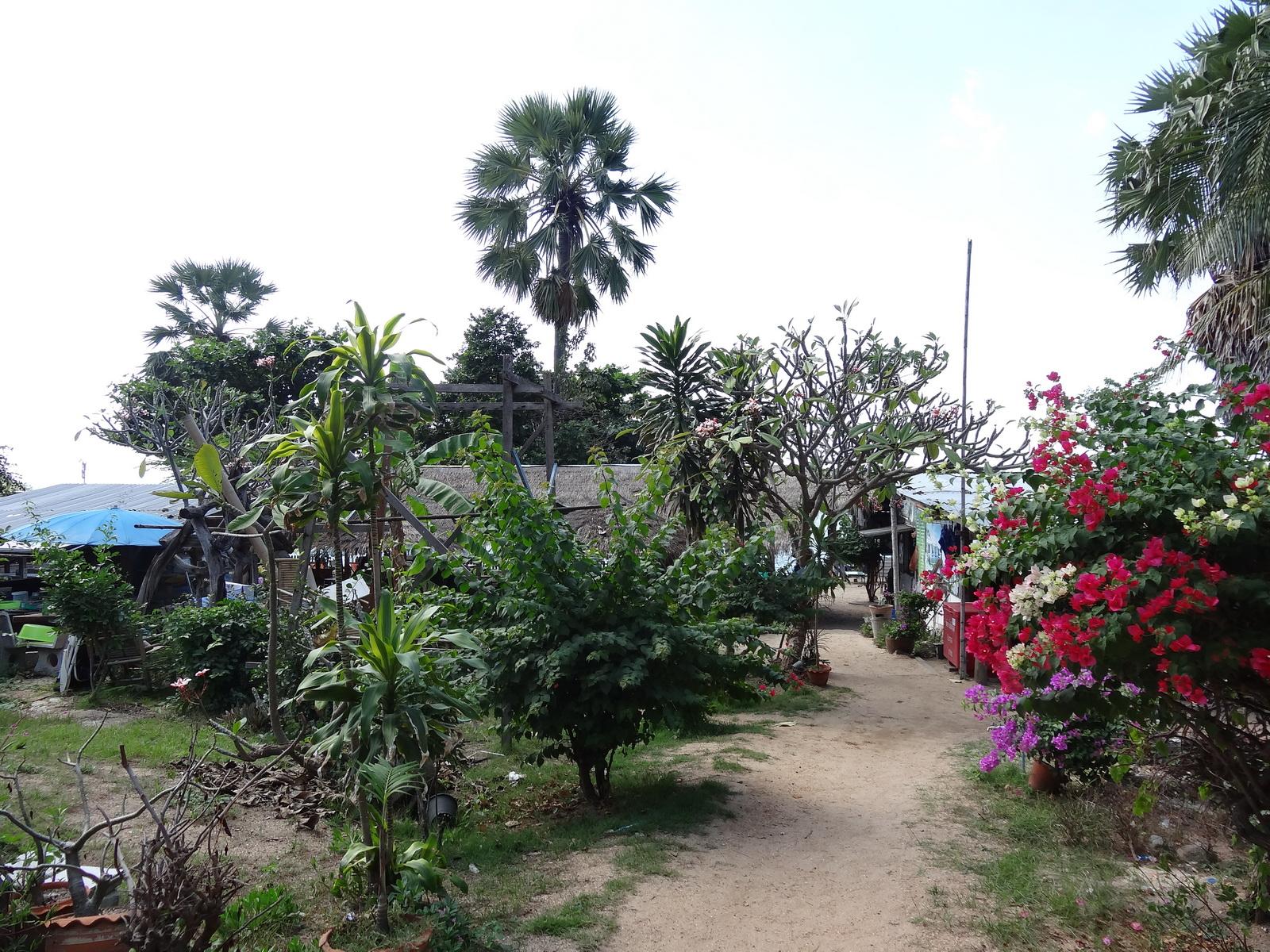 20 Pattaya 020