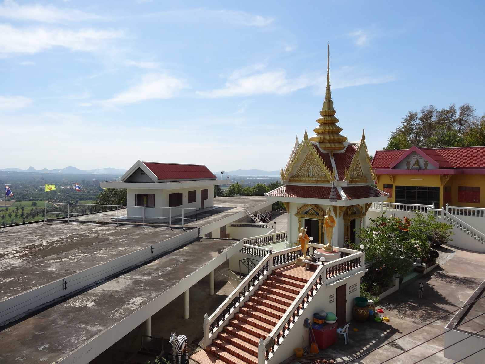 20 Pattaya 313