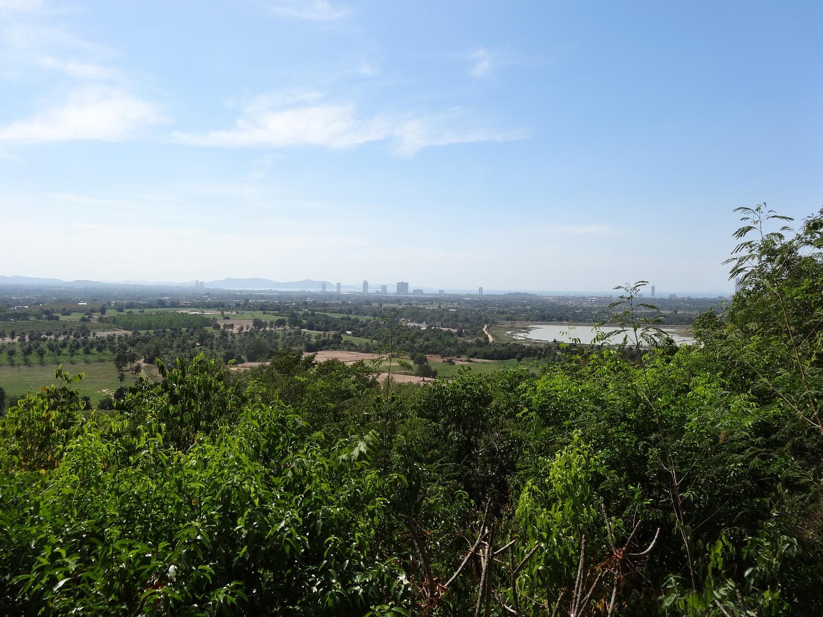 20 Pattaya 316