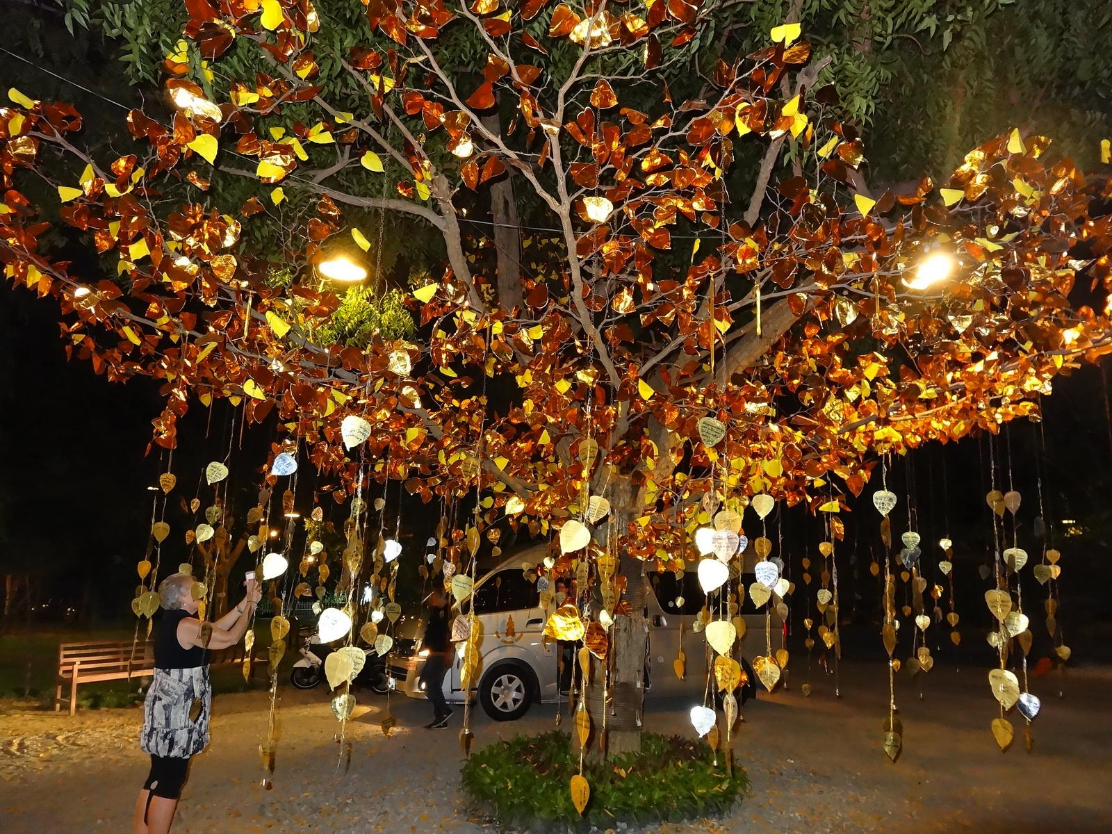 07 Pattaya 099