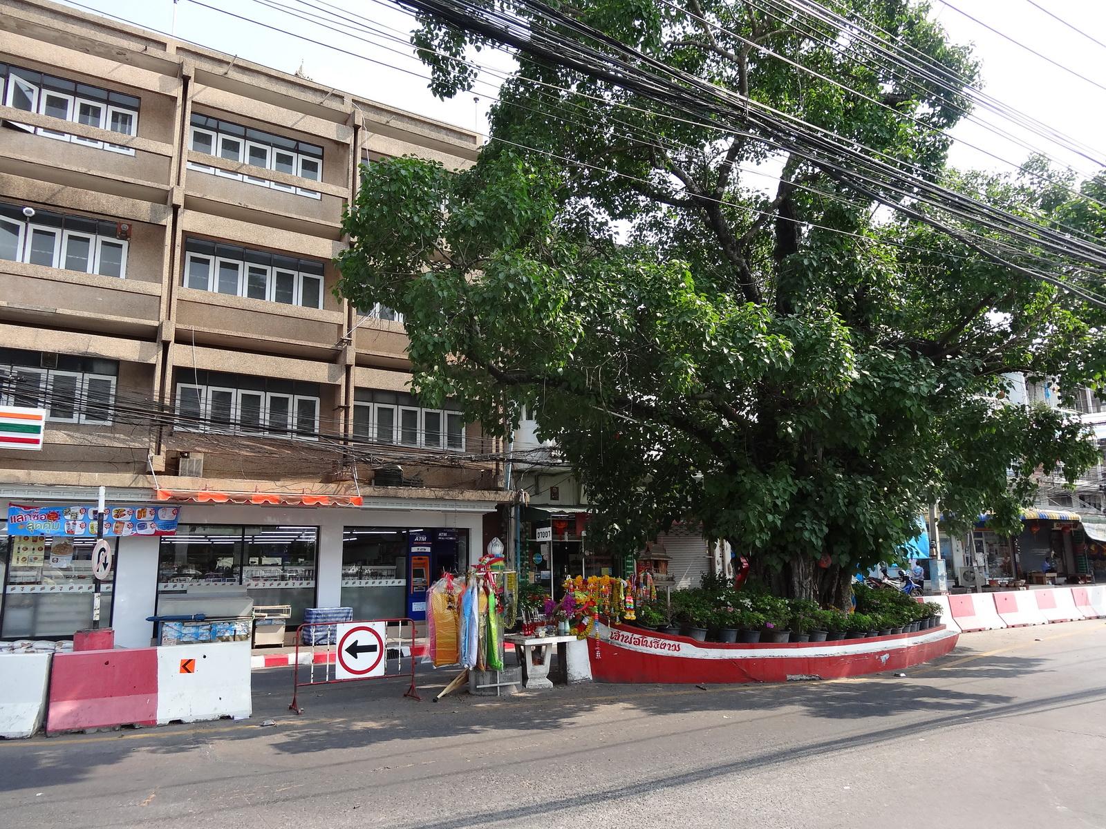01 Pattaya 009