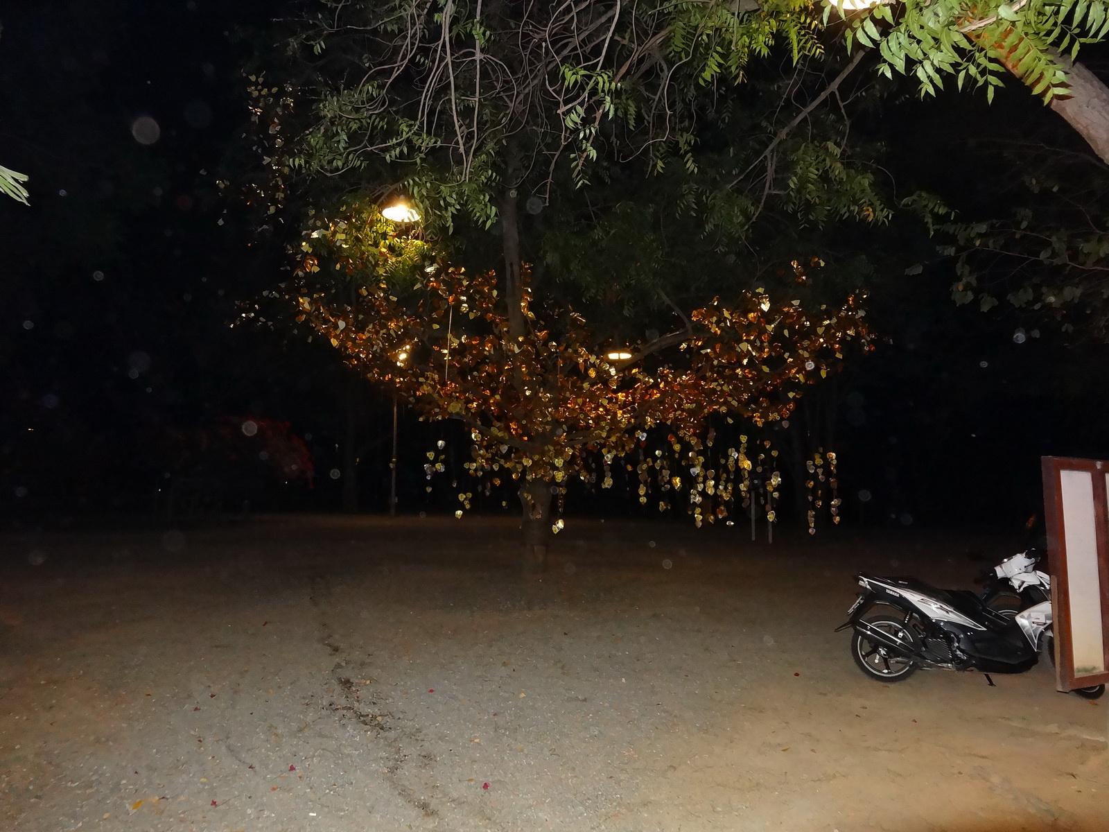 01 Pattaya 110