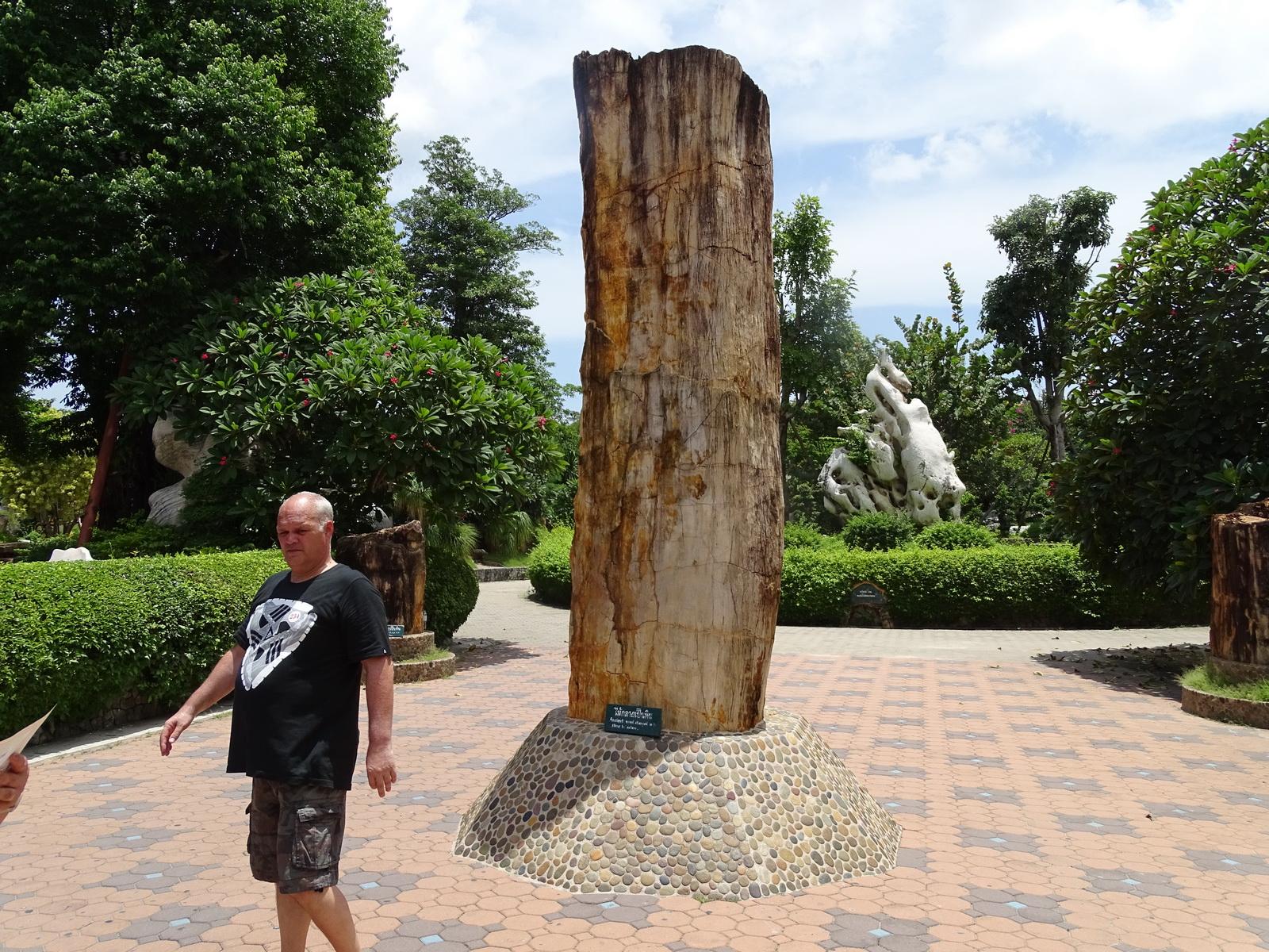 12 Million Years Stone Park 003