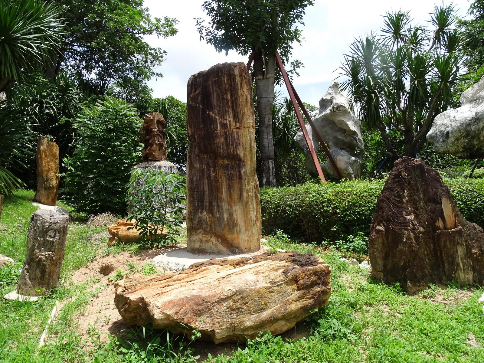 12 Million Years Stone Park 009