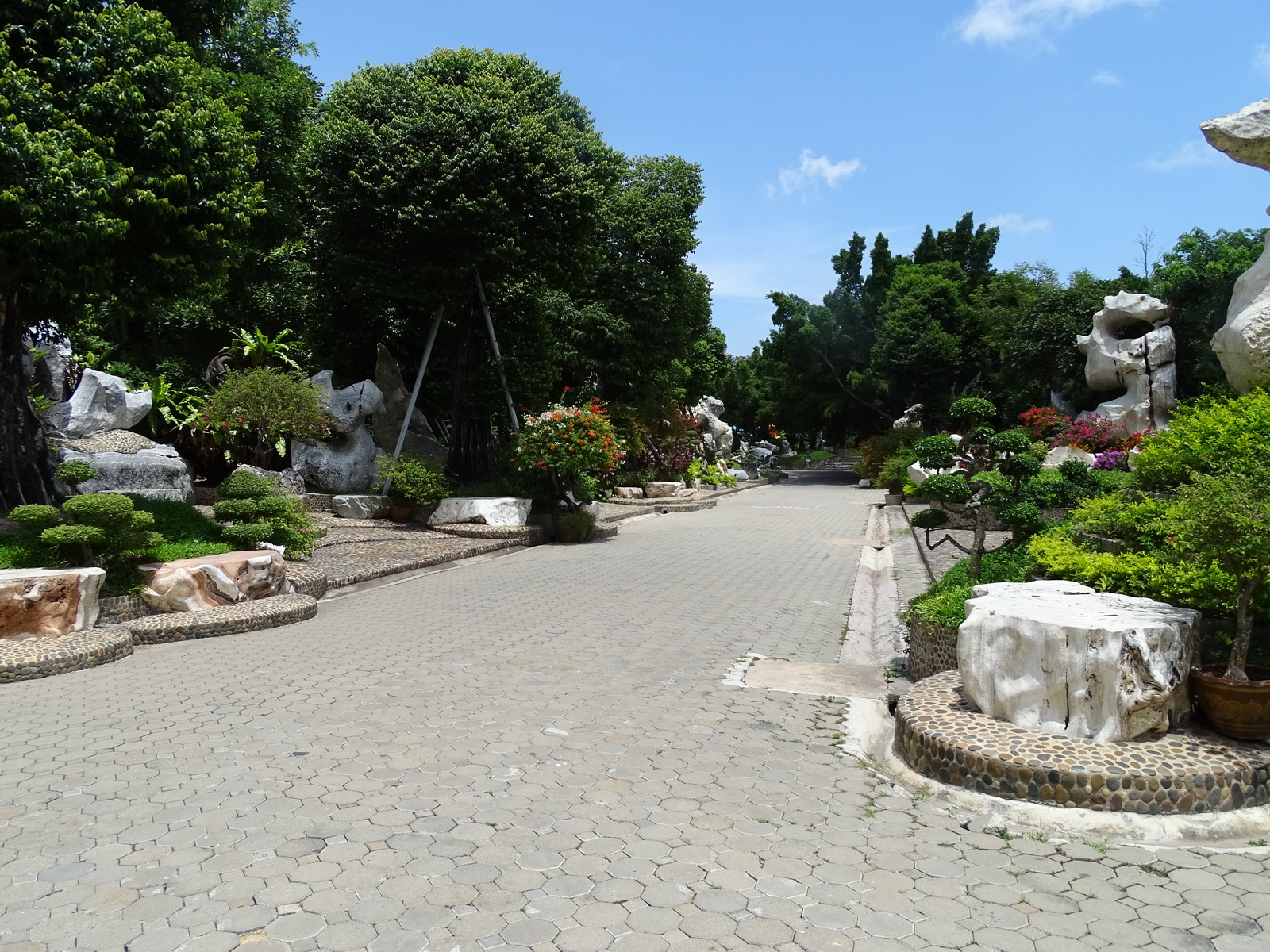 12 Million Years Stone Park 012