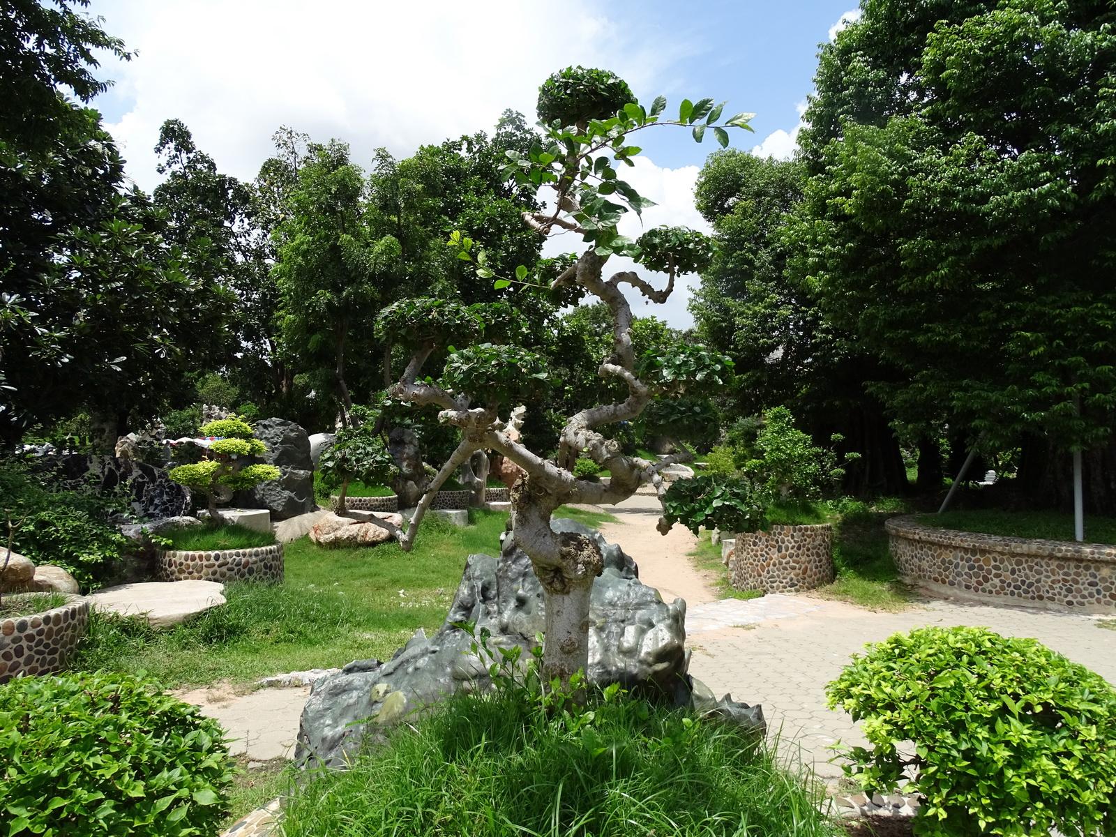12 Million Years Stone Park 043