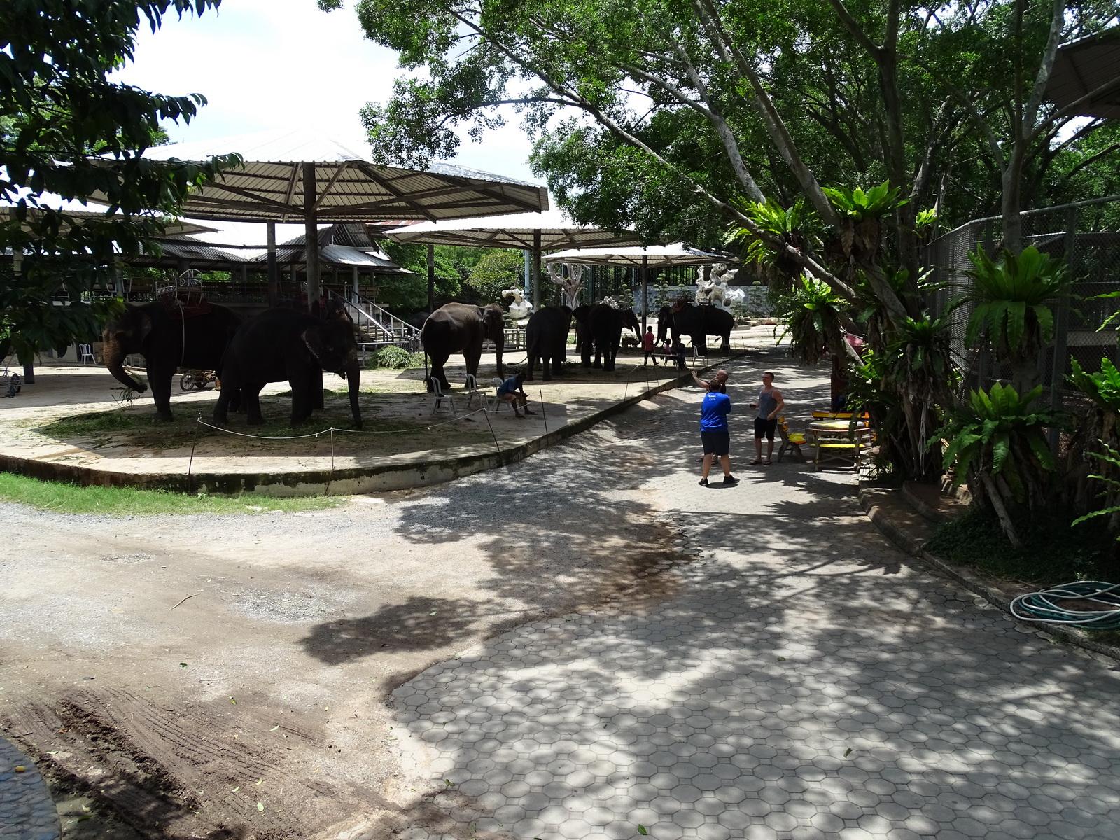 12 Million Years Stone Park 061