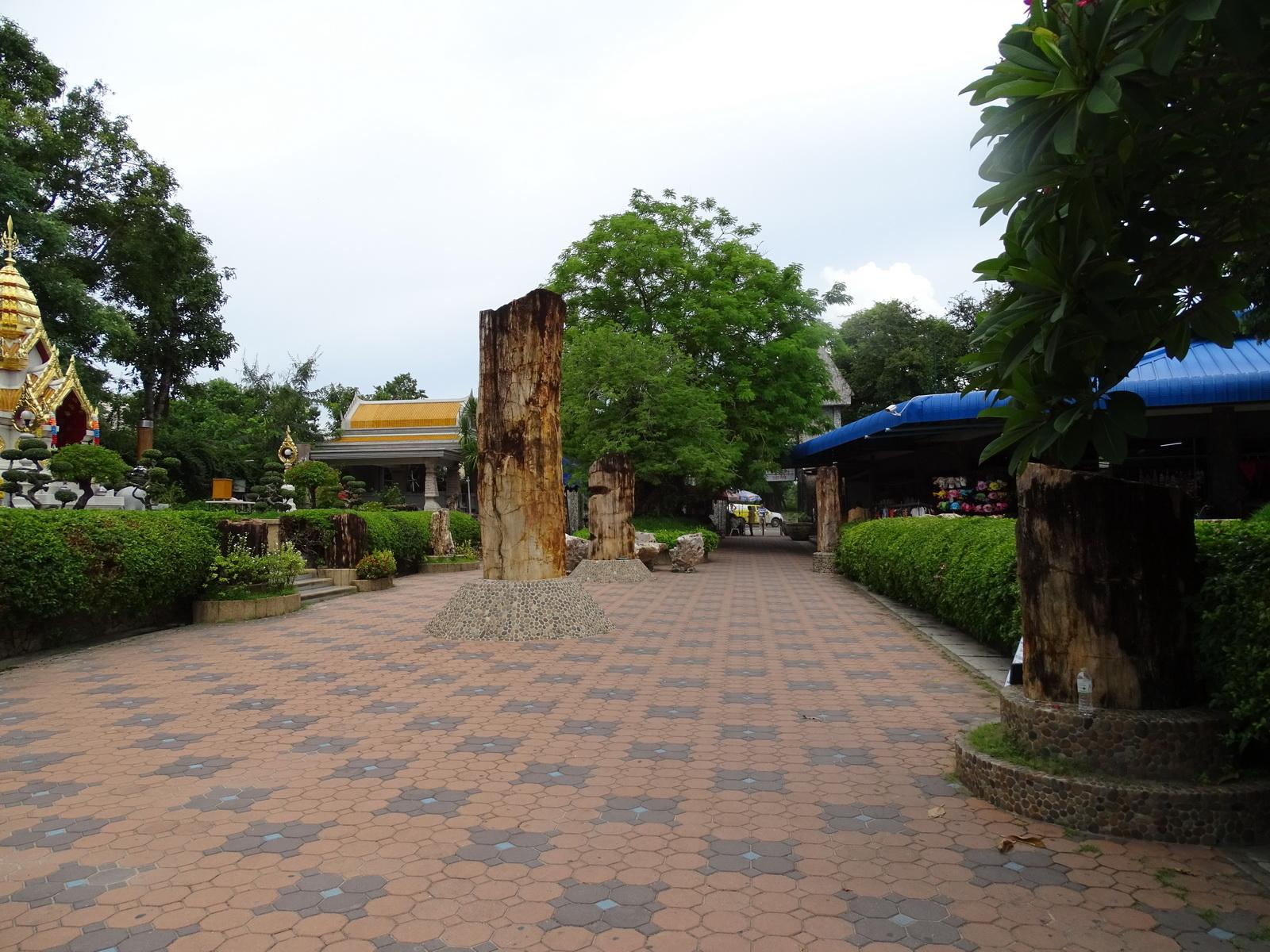 12 Million Years Stone Park 133