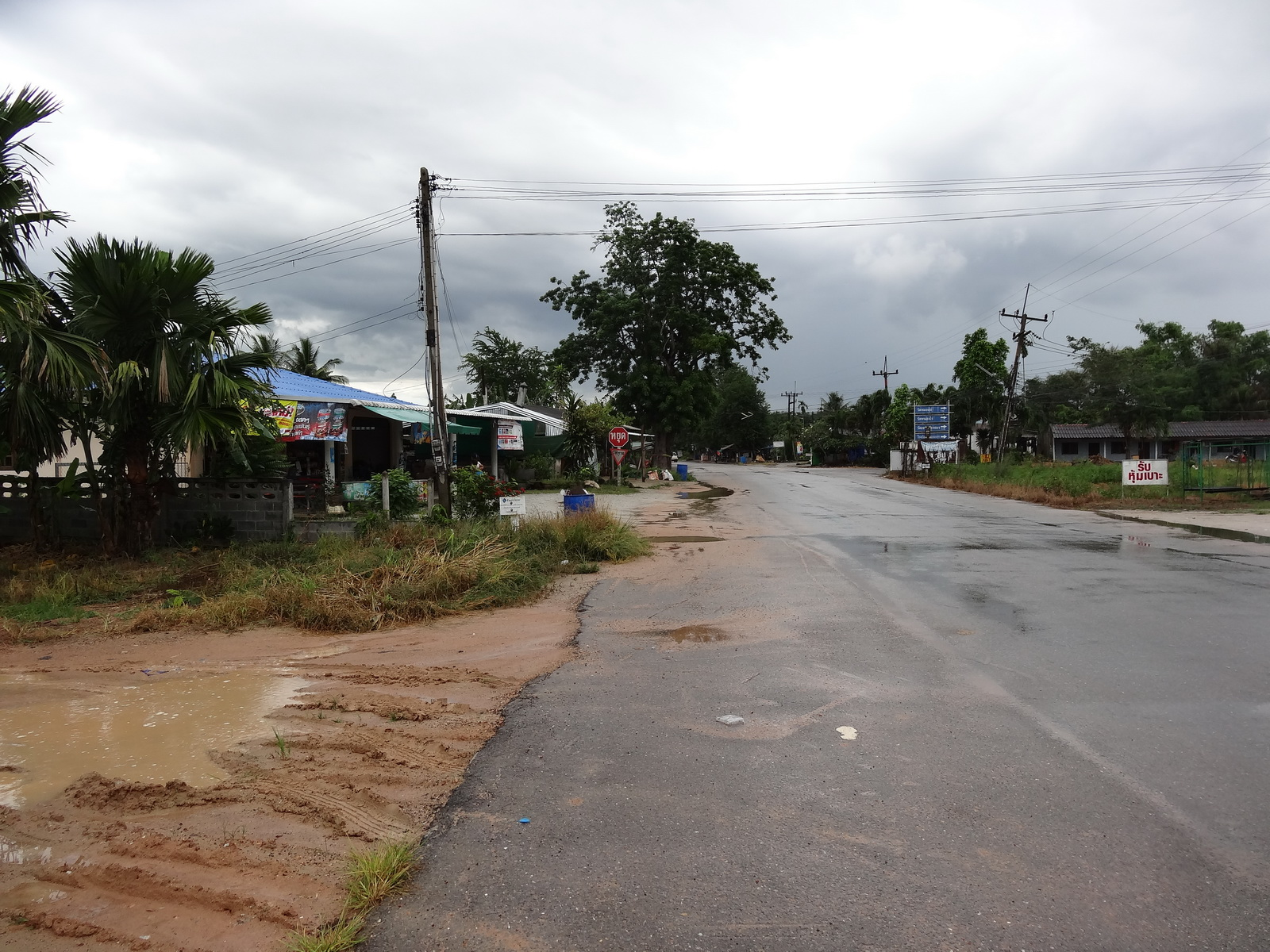 30 Pattaya 227