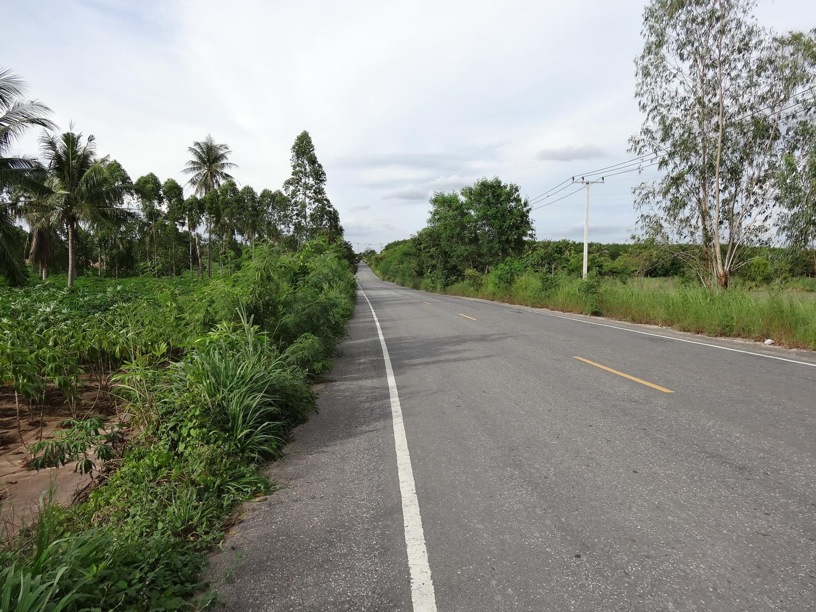30 Pattaya 235